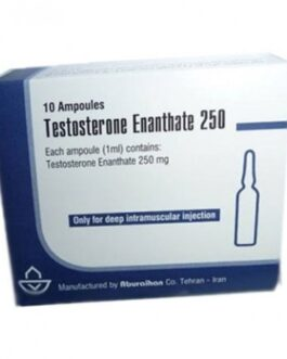 Testosterone enanthate 250