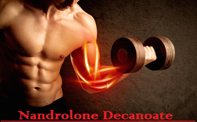 Nandrolone Decanoate