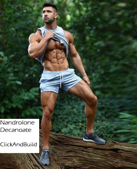 nandrolone-use-body
