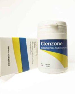 Clenzone