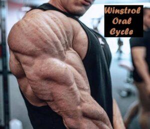 Winstrol Oral Cycle